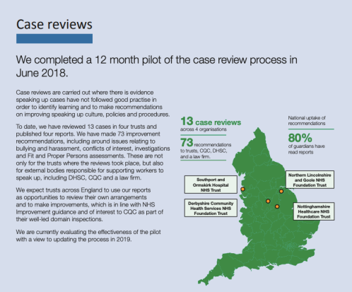 National Guardian annual report 21.11.2018 case reviews